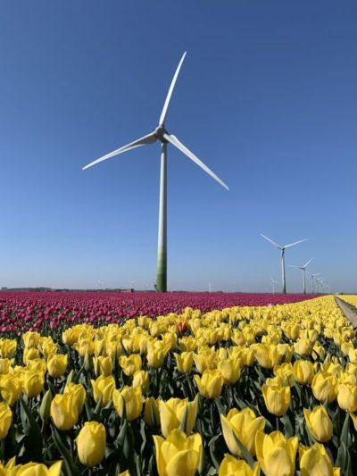 windpark samen voor de wind windmolenpark Swifterbant Dronten Flevoland asfalteren molenplaten kraanopstelplaatsen